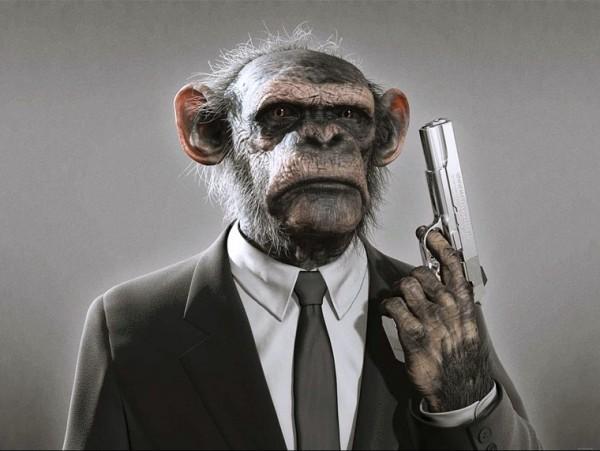 Гороскоп на 2016 год для мужчины-обезьяны