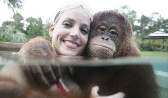 Гороскоп на 2016 год для женщины-обезьяны
