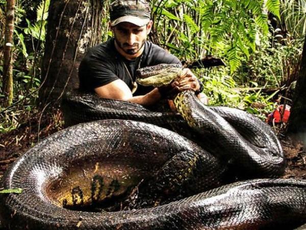 Гороскоп для мужчины Змеи на 2016 год