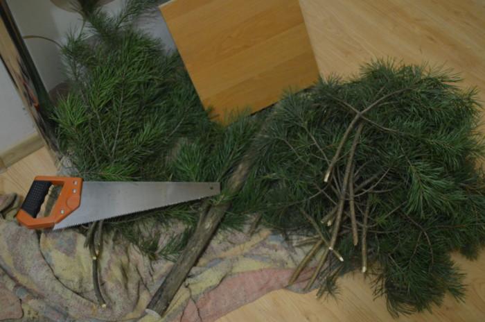 Живая елка из веток своими руками
