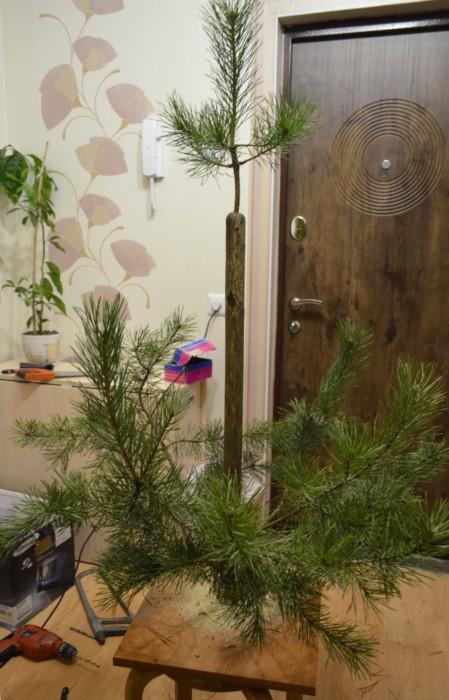 Как сделать елку веток своими руками