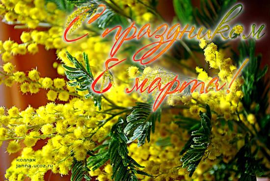Интересные открытки с мимозой на 8 марта