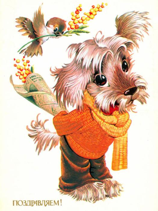 Поздравительные открытки с 8 марта с животными