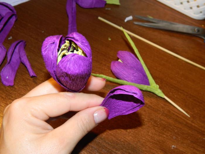 Цветы крокусы из бумаги с конфетами своими руками