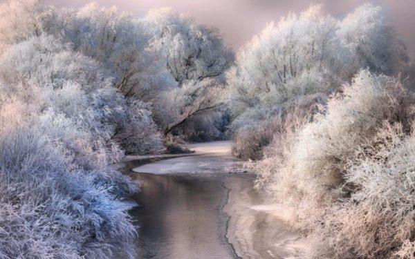 Новогодние заставки 2019 красивые и прикольные картинки