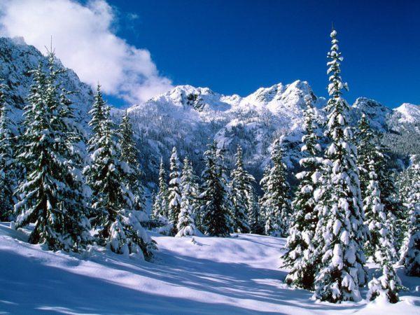 Красивые фото зимних пейзажей природы - заставки на телефон