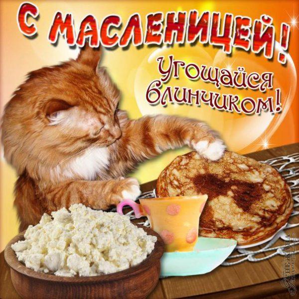Красивые открытки с Масленицей без текста и с коротким поздравлением