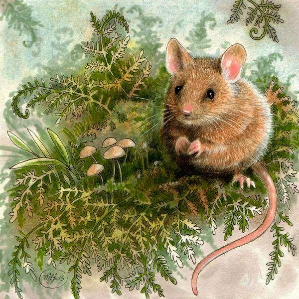 Современные новогодние рисованные картинки с мышками