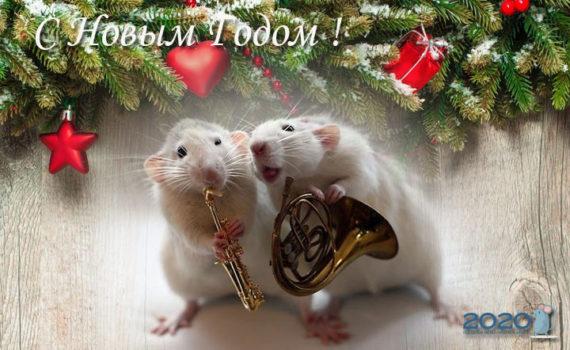 Новогодние открытки с годом Крысы 2020 - анимационные картинки-поздравление к году Крысы, красивые фото и рисованные изображения-поздравления с мышами и крысами
