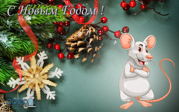 Лучшие рисованные открытки с Новым годом с ккрысами или мышами