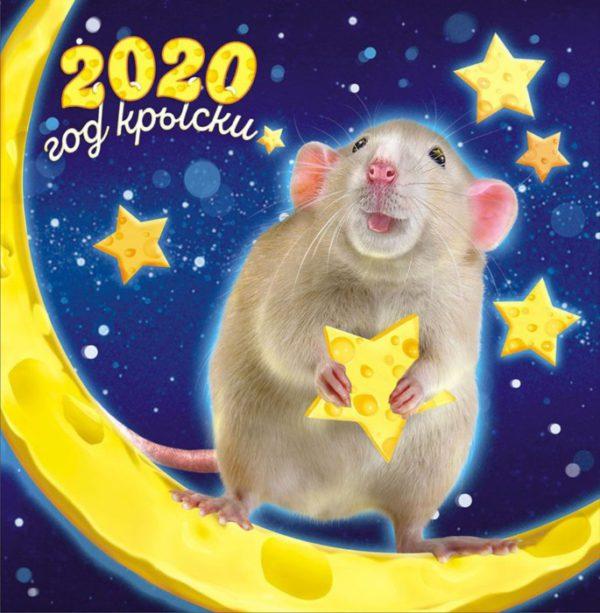 Современные открытки с мышками или крысками