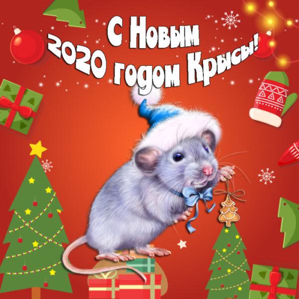 Новогодние открытки с мышками или крысами