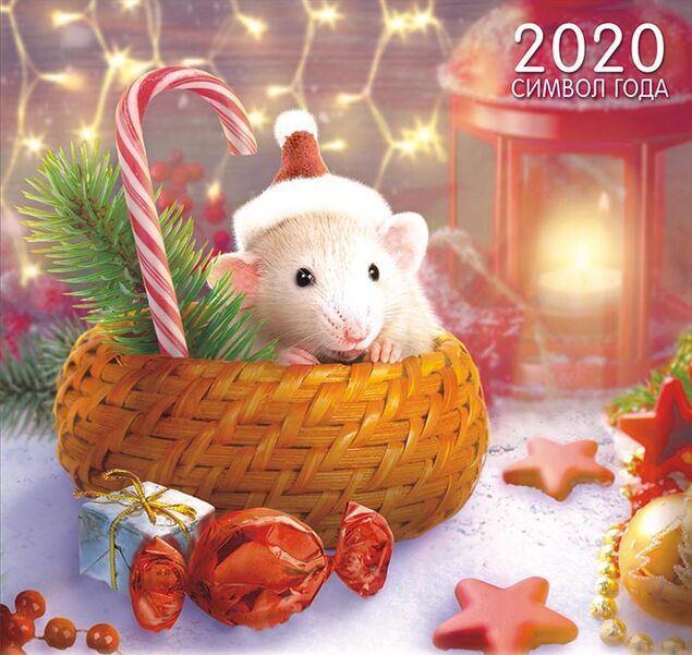 Поздравительные нарисованные картинки с Новым годом Крысы