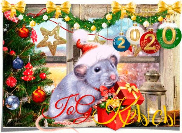 Лучшие открытки с новогодними крысами и мышами
