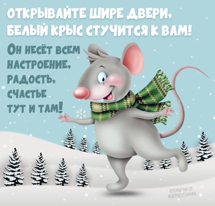 Новогодние открытки с мышками или крысами с юмором