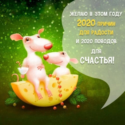 Прикольные открытки с мышами, крысами