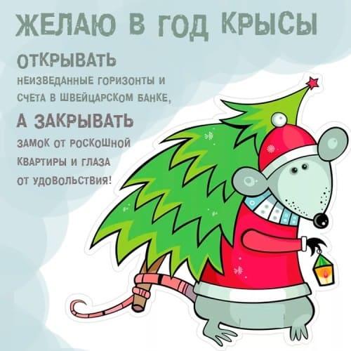 Прикольные открытки с крысами или мышами с поздравлениями