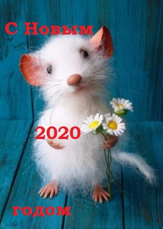 Новогодние открытки с крысами и мышами - короткое поздравление