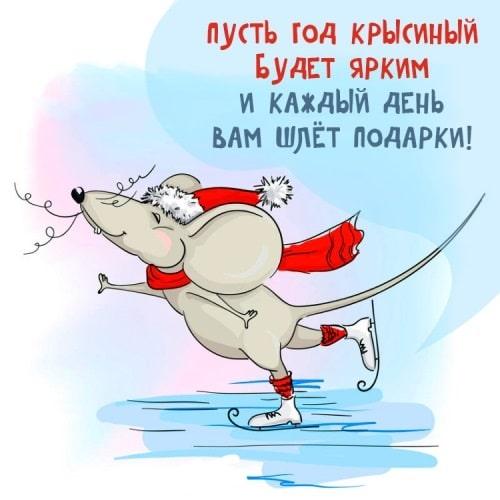 Прикольные открытки с крысами или мышами - короткое поздравление